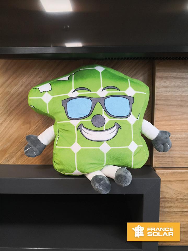 France Solar 2020 : Photo de la mascotte Ekoboy (Photo prise le 28 Juillet 2020)