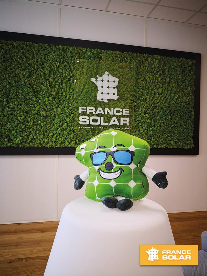 France Solar 2020 : Photo de la peluche France Solar (Photo prise le 12 Juin 2020)